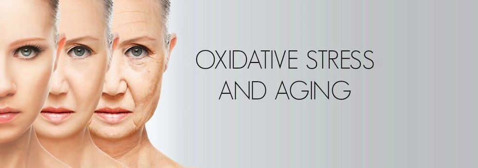 Photo drsuciu_oxidative_stress_aging